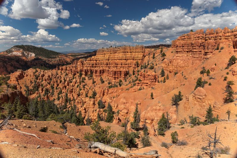 Red Canyon NF