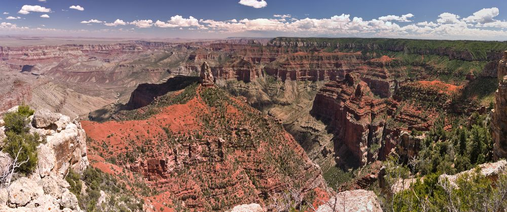 Kaibab NF (Grand Canyon NP – Nord, Vermilion Cliffs NM)